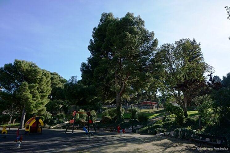 Parc Castillo Palomar (Saragosse), où les événements se sont produits